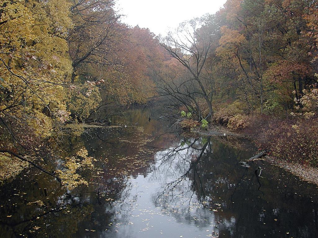 Bronx River in Autumn